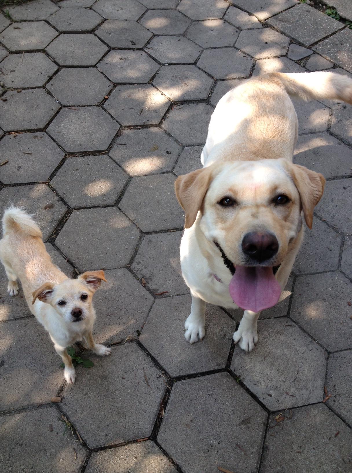 Chauncey & Ruby