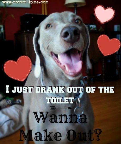 toilet3 (1)