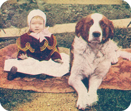 Antique Dog Photos via Flickr / Creative Commons